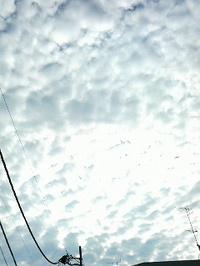2007112609190011