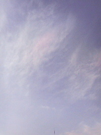 2008021910440001