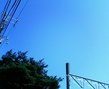 Sora_1