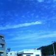 200610120851000.jpg