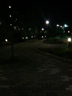 夜のお散歩は気をつけて♪
