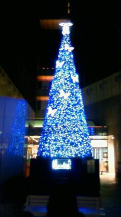 今年のクリスマスツリーは…